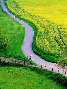 Winding Road... | Country Road..Take Me Home in 2019 ...