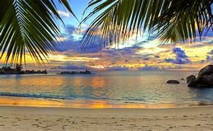 Bilder Meer Strand : foto strand meer natur palmen 5708x3506 ~ Eleganceandgraceweddings.com Haus und Dekorationen