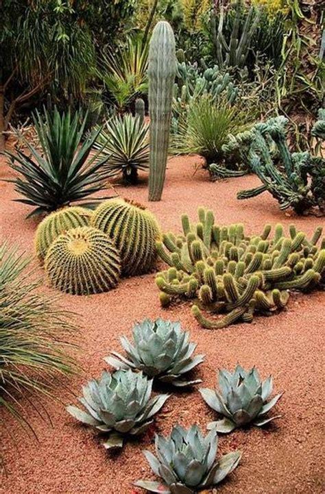 southwest garden design great southwest landscape design southwest landscaping pinterest gardens spring and front