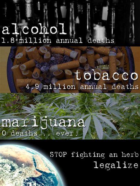 marijuana  deaths  toke   town