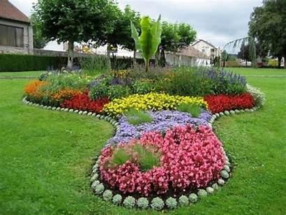 Garden Flower Gardening Modern Flowers Develop March