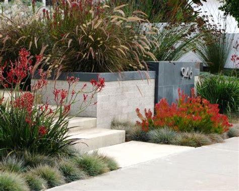 australian garden designs native australian garden home design ideas renovations photos
