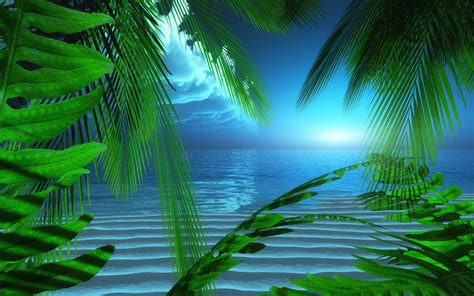 animated wallpapers  screensavers  images