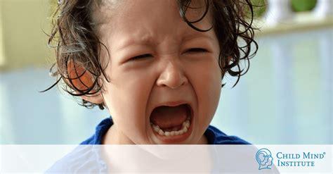 ninos furiosos como lidiar  la conducta explosiva