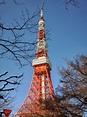 水問: 2013冬東京小旅行Day6-增上寺、東京鐵塔、巢鴨還有鬼子母神
