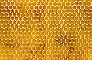 Honeycomb Texture Wallpaper Mural   Murals Wallpaper  Honeycomb