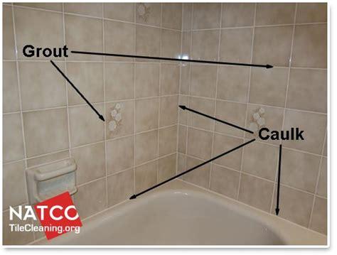 mold   bathroom