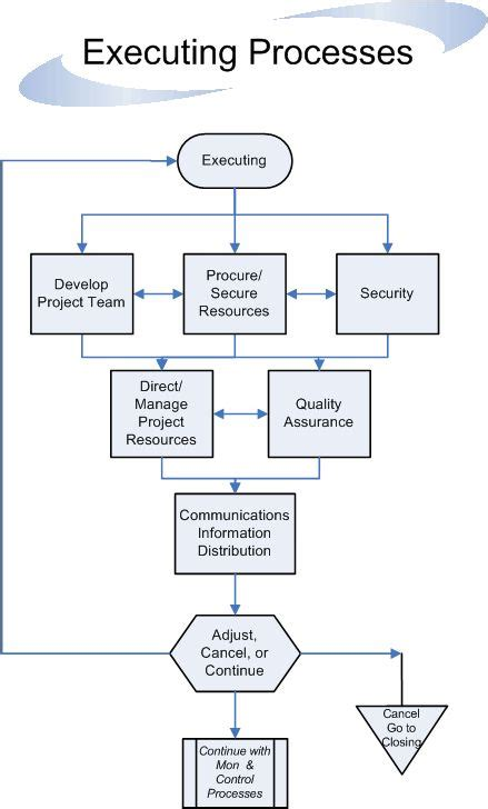 executing processes flow project managment pmi pmp