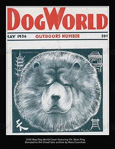 GALLERY - Magazine Covers featuring Chows - CHOWTALES