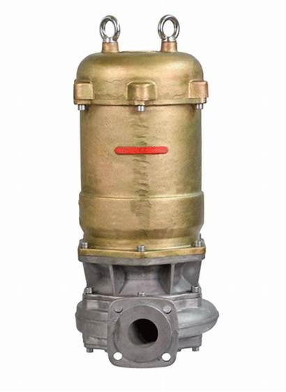 Pumps Single Stage Vacuum Hydro Pumping Vane