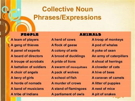 25+ Best Ideas About Collective Nouns On Pinterest  Group Of Crows, Awesome Thesaurus And Nouns