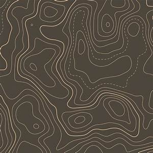 Topographic Contour Map Elevation Background