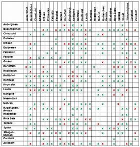 Gewächshaus Bepflanzen Plan : hochbeet bepflanzen pflanzplan mischkultur gr nd ngung ~ Lizthompson.info Haus und Dekorationen