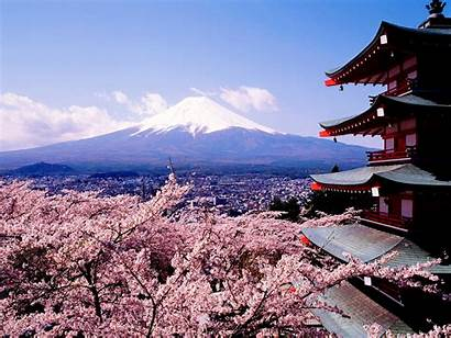 Cherry Blossoms Wallpapers Sakura Fuji Japan Mount