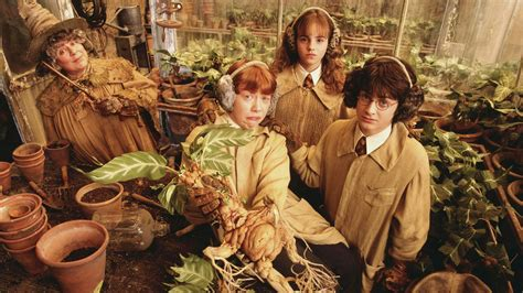 la chambre des secret harry potter and the chamber of secrets review and