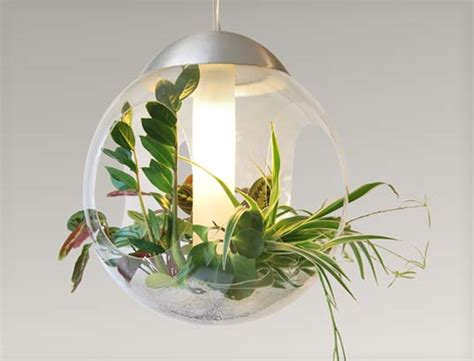 living babylone l suffuses your space with light and