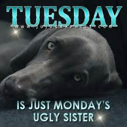 tuesday   mondays ugly sister graphics quotes