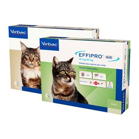 effipro duo spot  katze gegen floehe zecken