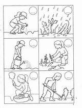 Plantation Listy Coloring Karty Pracy Histoire Vocabulaire Sequencing Activities Chomikuj Pl Raconter Escritura Cards Worksheets Preschool Plantas Ejercicios Template Comic sketch template