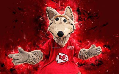 descargar fondos de pantalla kc lobo  mascota kansas
