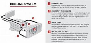 Ad  The Importance Of A Car U0026 39 S Engine Cooling System