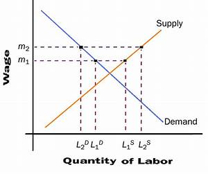 Solved  Using A Diagram Of The Labor Market  Show The