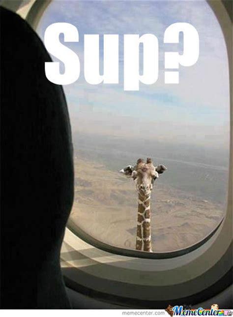 Sup Meme - sup by ccuurrttiiss meme center