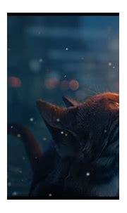 Wallpaper Engine Best Wallpapers - Cat Digital Art ...