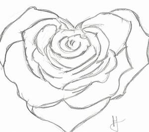 Heart Rose by Halsie93 on DeviantArt