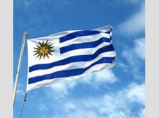 National Flag Of Uruguay 123Countriescom