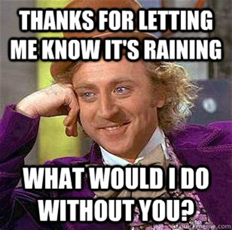 Memes Without Captions - thanks for letting me know it s raining what would i do without you condescending wonka