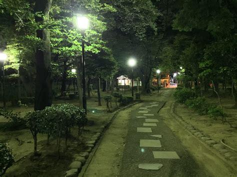 night walk   park japan web magazine