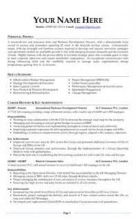 Professional Resume Cv by Cv Exles Free