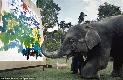 elephants paint using their trunks and special