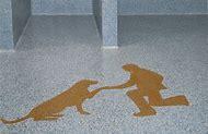 Everlast Epoxy Flooring