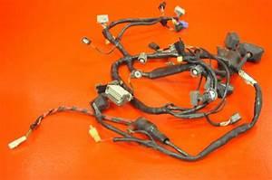 Buy 03 04 Honda Cbr600rr Cbr 600 Rr Cbr600 Wiring Harness