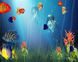3D Sea Life Screensaver Wallpaper | Free HD Wallpapers