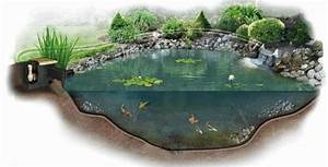 How to Build a Koi Pond - Ultimate Step by Step Guide