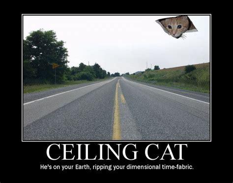 Ceiling Cat Meme - image 8046 ceiling cat know your meme