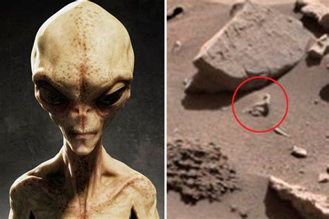Alien Life Exists Nasa Proof Shows 'humanlike Creature