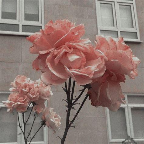 grey pink aesthetic pastel pink aesthetic pink