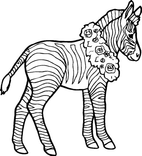 zebra coloring page coloring home
