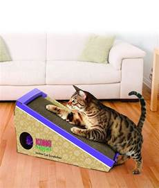 cat toys for indoor cats guide to cat toys for indoor cats by the happy cat site
