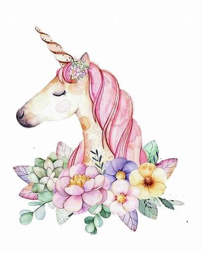 Unicorn Unicornio Unicornios Crown Clipart Magical Picsart