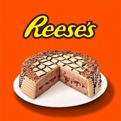 Ice Cream Cake Reese Reeses Cakes Carvel