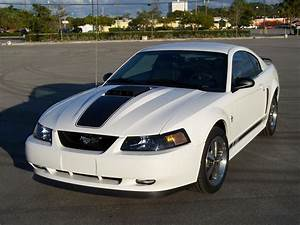 Sell 2001 2002 2003 2004 MUSTANG V6 GT MACH 1 CHIN SPOILER MOUNTING HARDWARE INCLUDED in Pompano ...