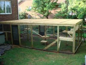 cat outdoor enclosure archadeck of the piedmont triad proves that creative
