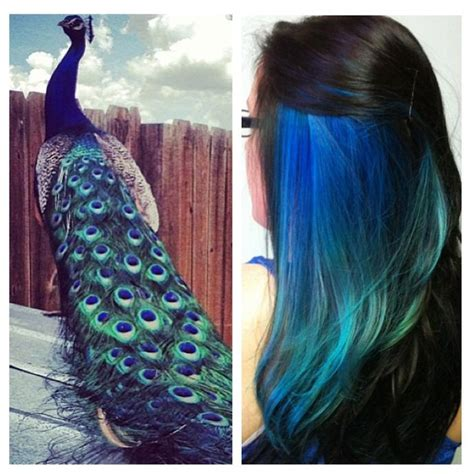 Peacock Ombre Hair Colors Pinterest Beautiful My
