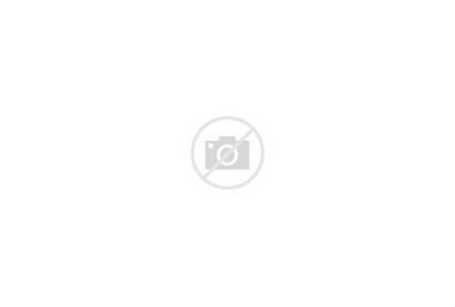 College Manhattanville Campus Quad Center Concept Night