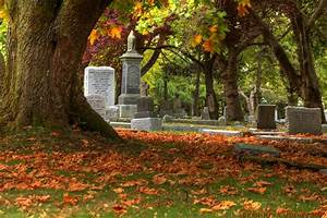 File:Ross Bay Cemetery Fall colors (1).jpg - Wikimedia Commons